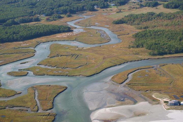 New England salt marshes are among the most vulnerable in the country. (Photo: West Wells National Estuarine Research Reserve, Maine)