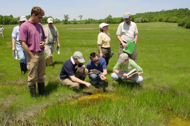 To build capacity for addressing New England salt marsh resilience, regional National Estuarine Research Reserves held a workshop in April 2018 to share adaptation strategies.