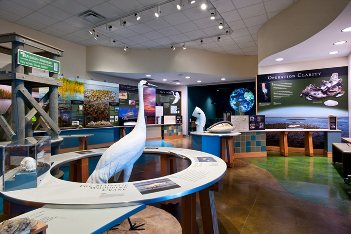 Like many visitors' centers, exhibits at the Guana Tolomato Matanzas National Estuarine Research Reserve are largely hands-off.