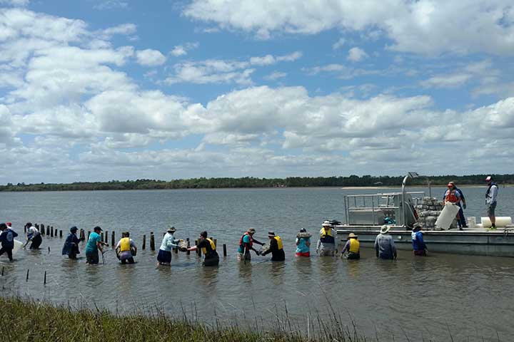 The project team, GTM NERR staff, students and volunteers installed and monitored six living shoreline sites from 2017 to 2019