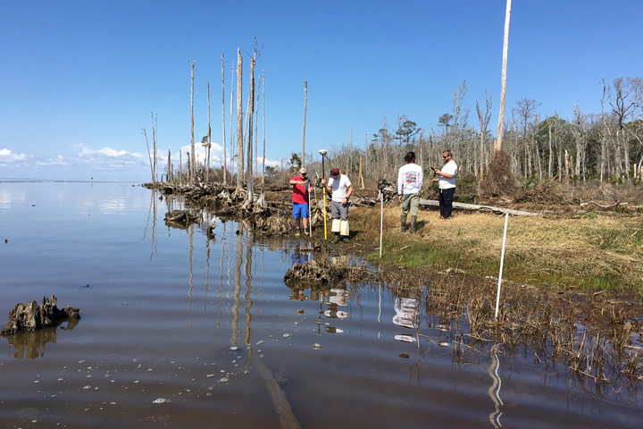 Surveying bald cypress swamp in Bon Secour Bay, AL (Just Cebrian)