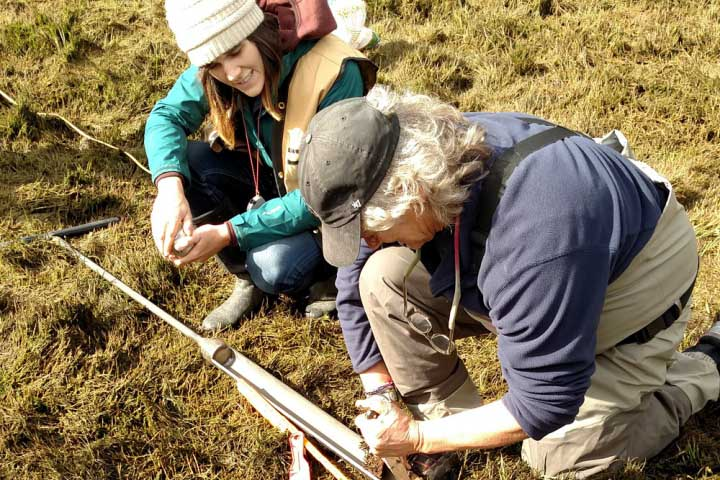To fill carbon stocks data gaps in the Pacific Northwest, the researchers conducted a comprehensive blue carbon assessment for PWN tidal wetlands.