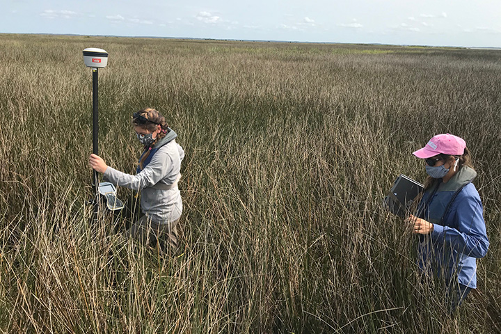 Elevation monitoring at Chesapeake Bay Maryland Reserve.