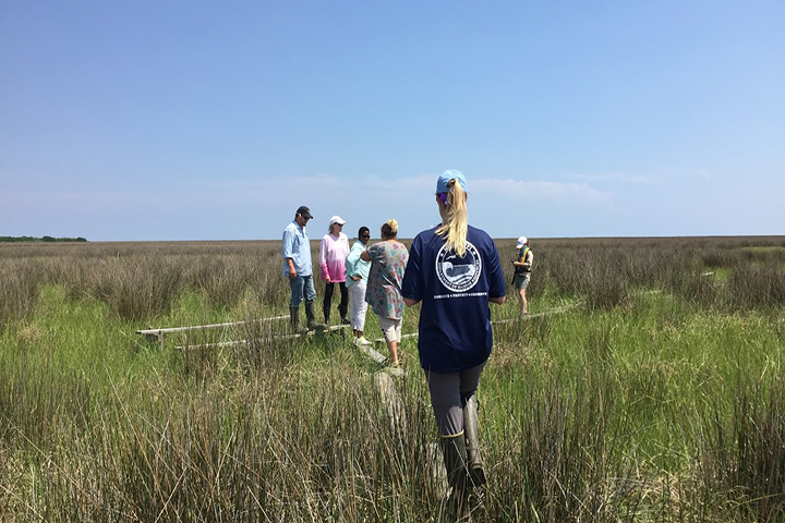 Tidal wetlands across the United States experience sea level rise differently based on a variety of local factors. Photo credit: Sandra Huynh