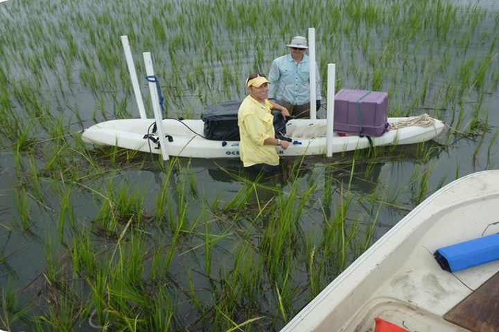 Acoustic monitoring can be conducted in a range of habitat types, below and above water. (Photo credit: Dennis Allen)
