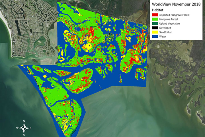 Researchers used high-resolution satellite imagery to map mangrove habitat at the Rookery Bay Reserve