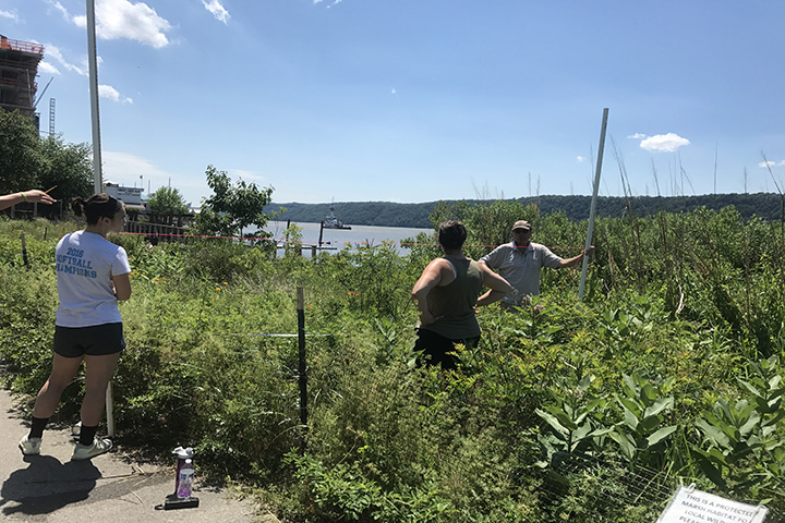 Measuring profile lines and assessment point parameters at Yonkers (Amy Williams)