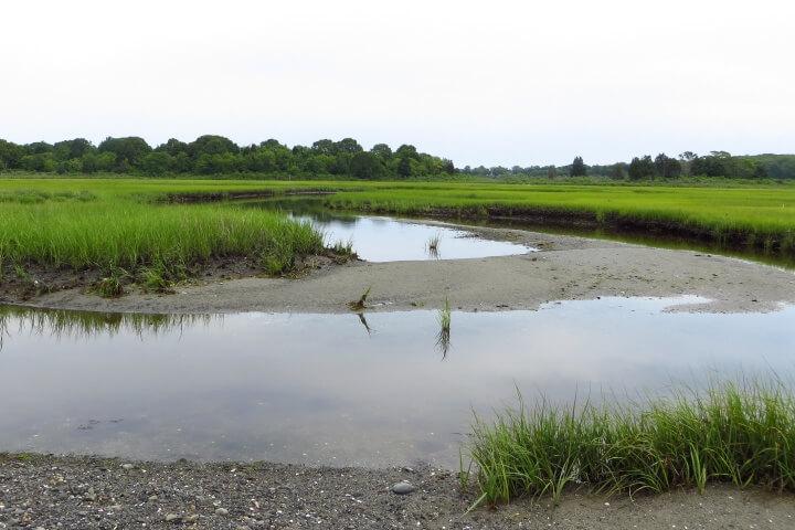 Narragansett Marsh at Narragansett Bay NERR