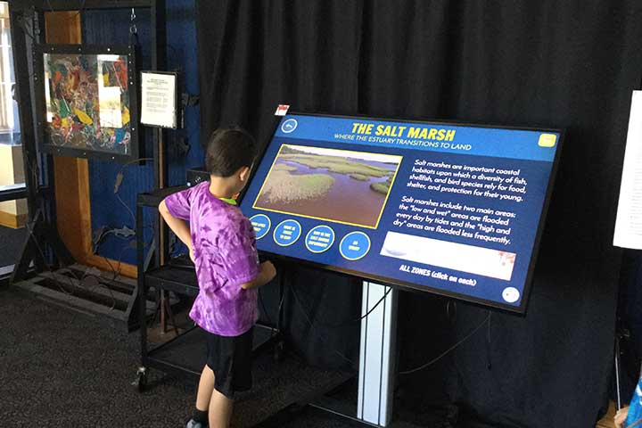 To increase interactive learning opportunities, three National Estuarine Research Reserves worked together to create computer games exploring topics like shoreline erosion, drought, and estuary stewardship.