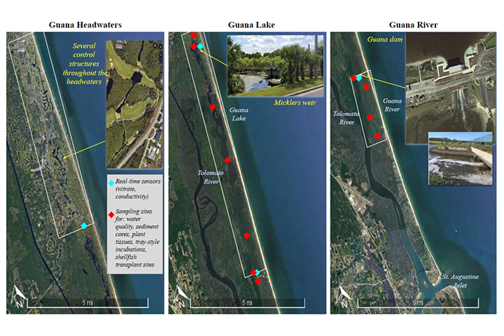 This image shows the potential sampling locations and the primary water control features within each part of the Guana River Estuary. (Credit: Kaitlyn Dietz)