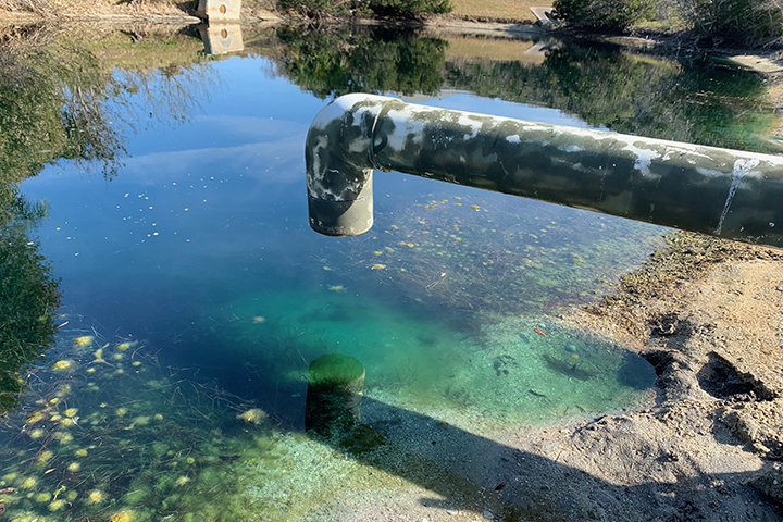 Stormwater can carry high levels of nitrogen to the Guana River watershed. (Credit: Christine Angelini)