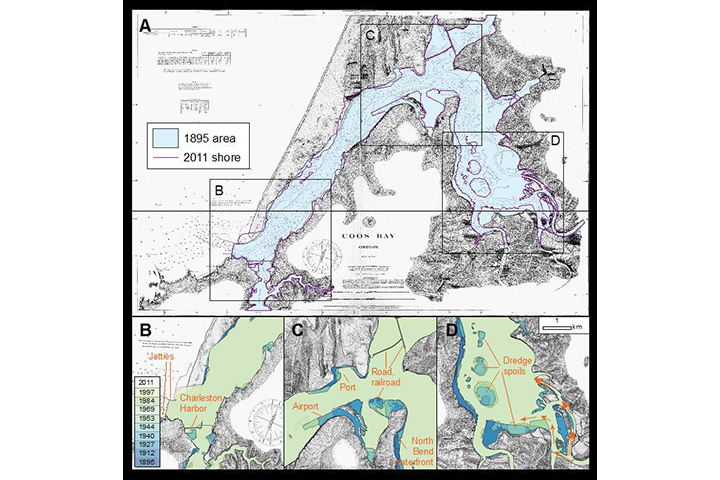 The estuary has undergone significant changes over the past 150 years. Planners are now considering proposals for additional dredging.
