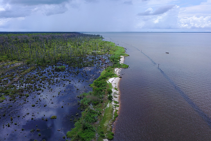 An aerial view of the Swift Tract living shoreline project in Bon Secour Bay, AL (Eric Sparks)