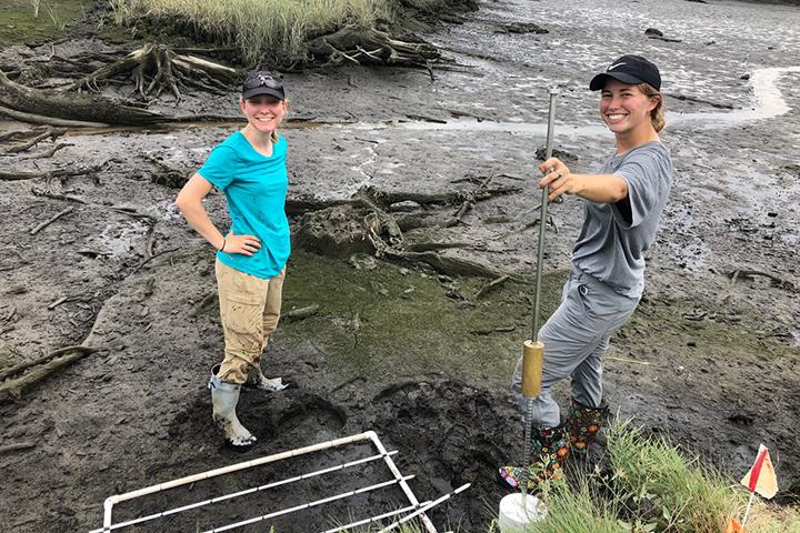 Annual marsh monitoring at Great Bay, NH. (Credit: Jason Goldstein)