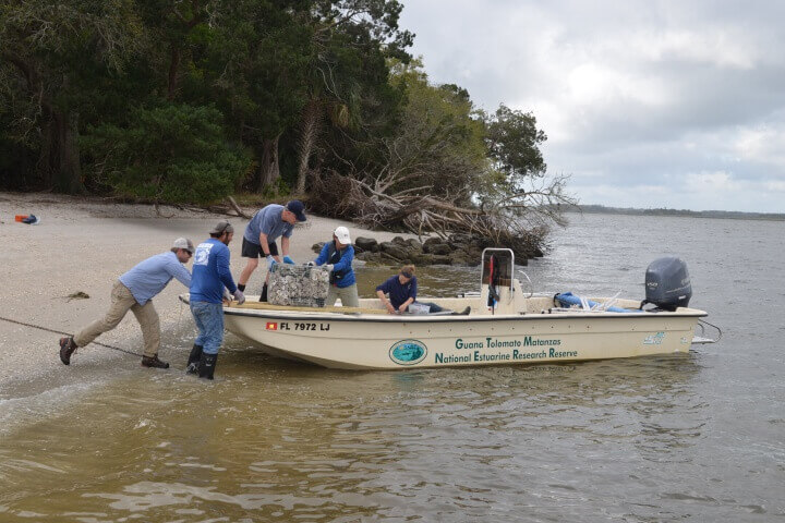 Researchers and restoration practitioners tested a new living shoreline technique to protect and restore salt marsh and oyster reef