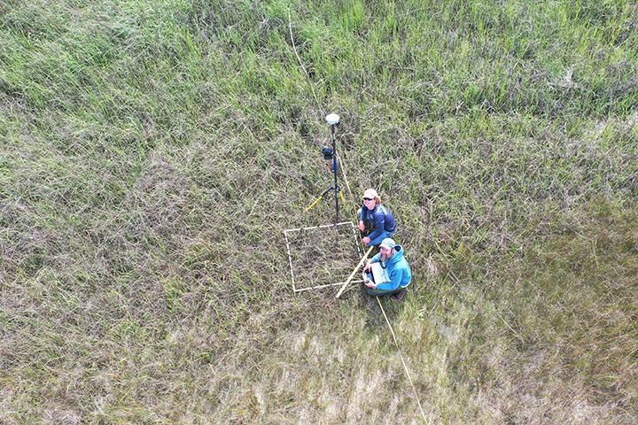 Plant and elevation monitoring at North Carolina Reserve.