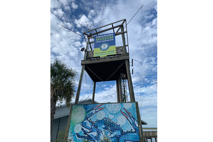 Motus Wildlife Tracking System on top of partner Port Royal Sound Foundations' viewing tower in Beaufort, SC