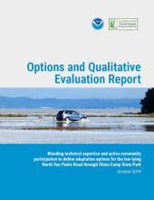 Options and Qualitative Evaluation Report