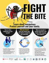 Fight the Bite Brochure cover