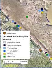 TLP placement plots treatment